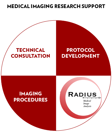 circle divided in 4 parts: technical consideration, protocol development, imaging procedures, image analysis (MIRS-IA)